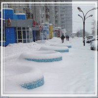Снегопад. :: Владимир Бочкарёв