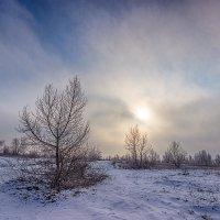 На восходе(фрагменты зимы). :: Павел Петрович Тодоров