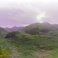 пейзаж :: linnud
