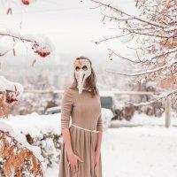 Зима.Начало :: Ирина Холодная