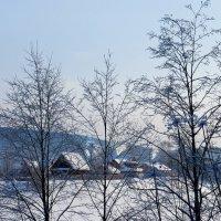 Зимой в деревне... :: Светлана Игнатьева
