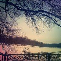 Тишина :: Ирина Крохмаль