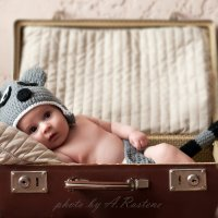 Енот - путешественник :: Aleksandra Rastene