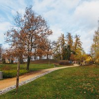 Поздняя осень в Чехии :: Алексей Морозов