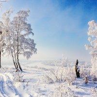 Разгар зимы :: Анатолий Иргл