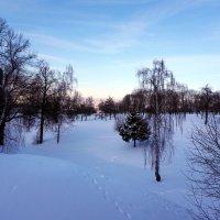 Зимушка - зима ... :: Лариса Корженевская