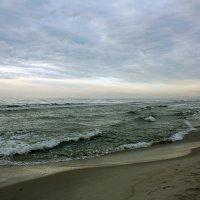 Море на Куршской косе :: Elena N