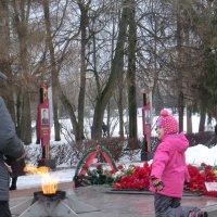 Великие Луки. 23 февраля 2016... :: Владимир Павлов