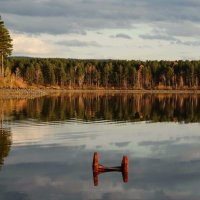 осень.. :: Alla Swan