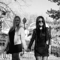 Черно-белая чёрная и белая :: Андрей Майоров