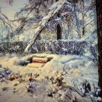На аллее зимой. :: Василий Ярославцев