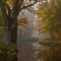 Осень на канале :: Геннадий Новов