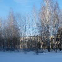 Утро :: Александр Подгорный