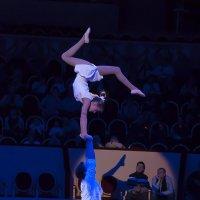 Цирк на Фонтанке :: Наталья Щепетнова