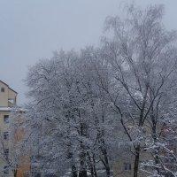 Зима вернулась...попрощаться :: Galina Dzubina