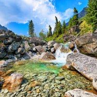 Горный ручей с невысоким маленьким водопадом :: Виктор Никитин