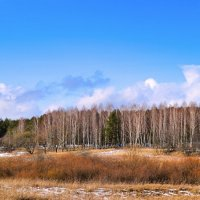 Февральский пейзаж :: Милешкин Владимир Алексеевич