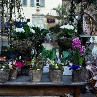 Пасхальный рынок, Больцано :: Екатерина Королёва