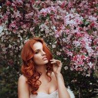 Рыжик в яблоневом саду :: Анастасия Конева