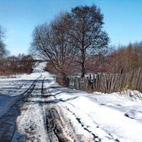 Просыпается околицы дорога... :: Лесо-Вед (Баранов)
