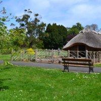 Ботанический сад(Дублин) :: zoja