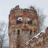 старая башня Фёдоровского городка :: Елена