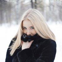 лес :: Илья Родионов