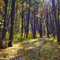 Рисует осень... :: *MIRA* **
