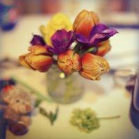 Цветы :: Tatiana