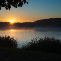 Sunrise 2 :: Виктор
