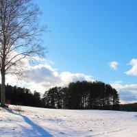 В конце зимы. :: Нина