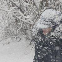 Снег кружится... :: Наталья