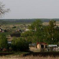 Засохшее  дерево...   почти  брошенная  деревня.... :: Валерия  Полещикова