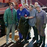 Мужики! А может быть, поговорим о рыбалке, морской…? (вес 46 кг.) :: kolin marsh