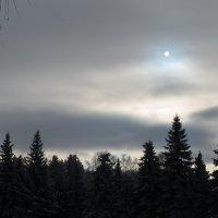 Февраль :: Наталья Тагирова