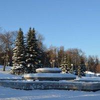 Ясный зимний день :: Наталья