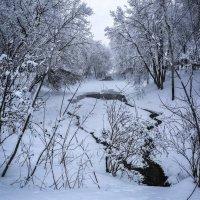 Последний снег... :: Svetlana Sneg