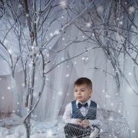 В зимнем лесу :: Любовь Советова