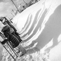 Тени тоже с нами на лыжах :: Дмитрий Стёпин