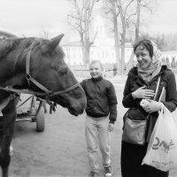 Говорят, что лошади ржут. :: люба