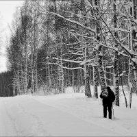 Путник :: Николай Белавин