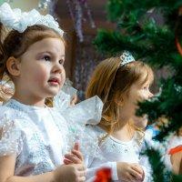 Девочки снежинки :: Slava Winner