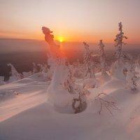 Зимнее солнце :: Виталий Истомин