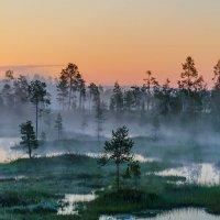 Утро туманное :: Альберт Беляев