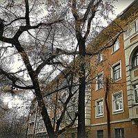 городская графика :: Надежда Ерыкалина