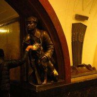 Одна из самых обласканных собак в мире :: Андрей Лукьянов