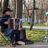 Уличный музыкант :: Андрей Майоров