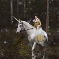Декабрь в заколдованном лесу. :: Igor Veter
