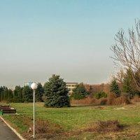 Ботанический сад. :: Murat Bukaev