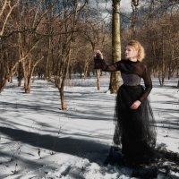 Однажды в зимнем лесу... :: Татьяна Сафронова